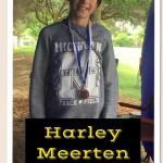 HarleyMeertenBronze