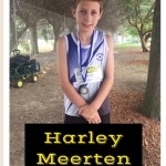 HarleyMeertenGold